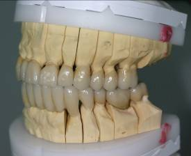 ge_dentist_or_specialization_25